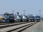 Photo of Tokyo Freight Terminal 40th Anniversary Festival and EF66 and EF210 Thumbnail