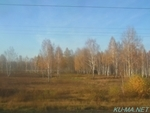 Photo of SIBERIYAK view Thumbnail
